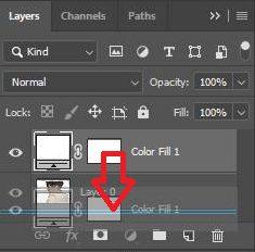 Memindahkan lapisan isian Warna Solid di bawah gambar pada Layer 0